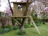 a Real Tree House